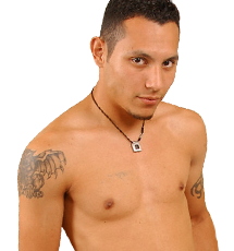 Live Cams with Gay Webcam Superstars!